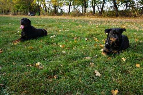 Astor & Emma